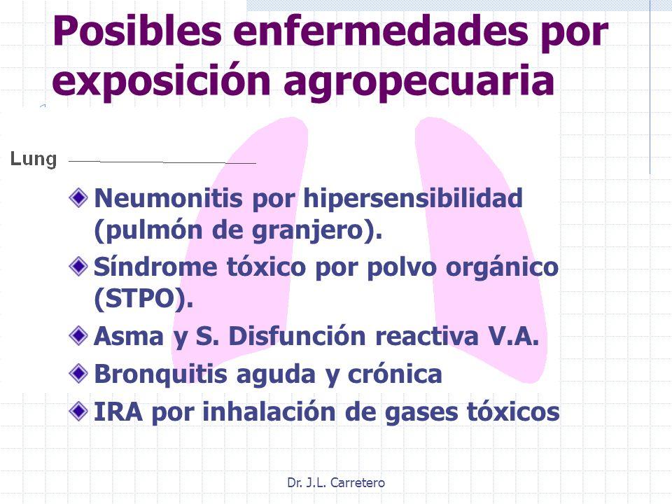 Dr. J.L. Carretero Posibles enfermedades por exposición agropecuaria Neumonitis por hipersensibilidad (pulmón de granjero). Síndrome tóxico por polvo