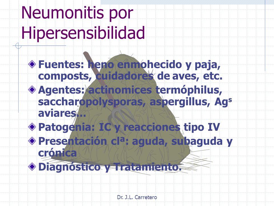 Dr. J.L. Carretero Neumonitis por Hipersensibilidad Fuentes: heno enmohecido y paja, composts, cuidadores de aves, etc. Agentes: actinomices termóphil