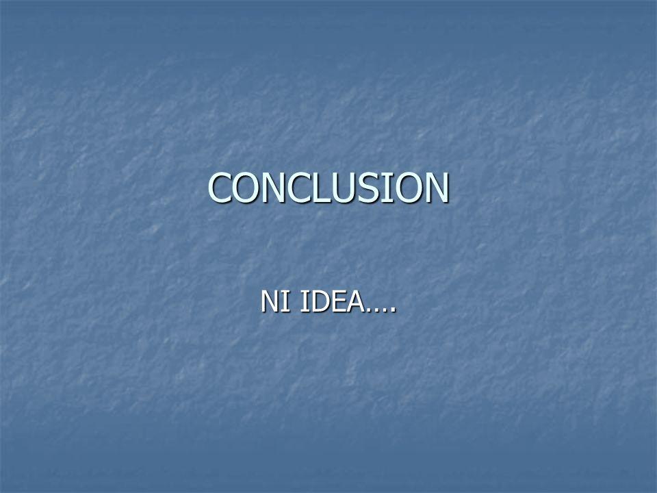 CONCLUSION NI IDEA….