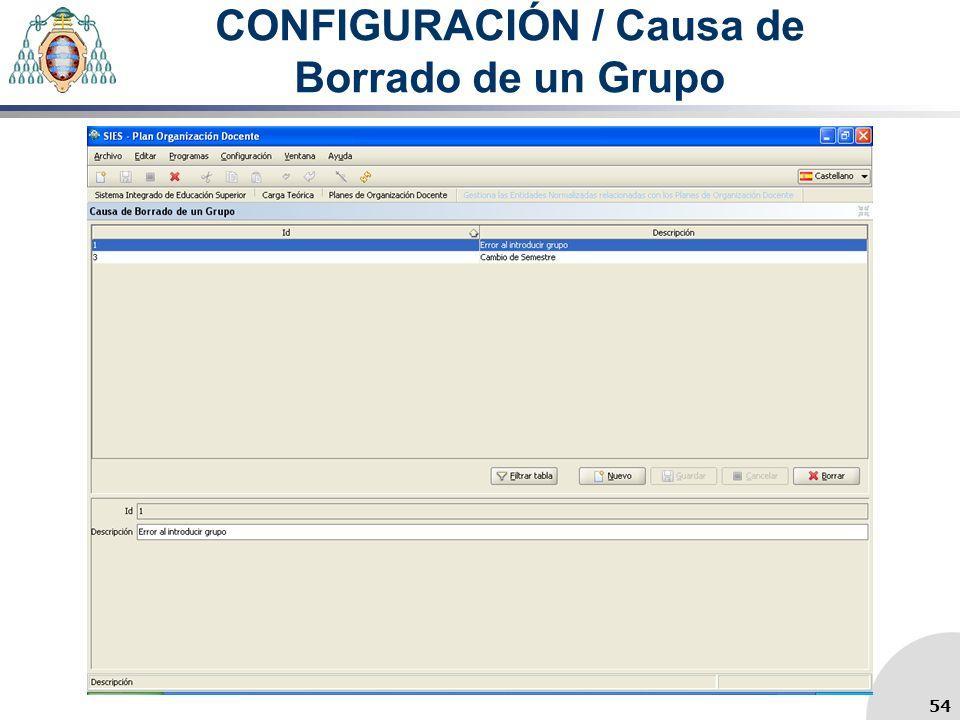 CONFIGURACIÓN / Causa de Borrado de un Grupo 54