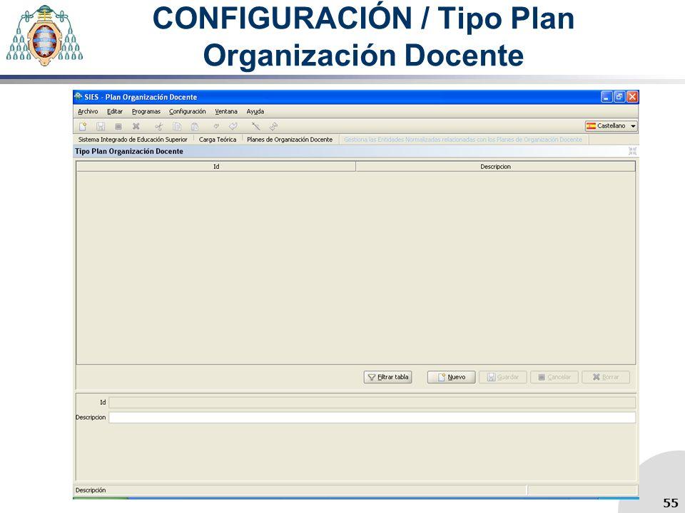 CONFIGURACIÓN / Tipo Plan Organización Docente 55