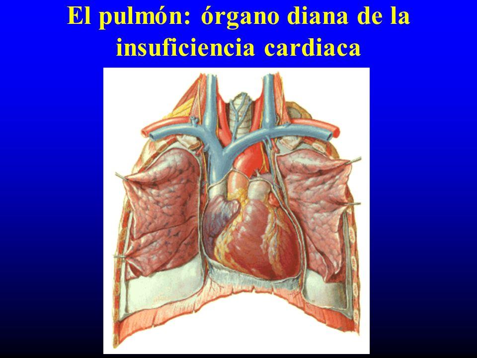 Guión Fisiopatología de la congestión pulmonar Alteraciones función respiratoria: –Mecánica ventilatoria –Transferencia gaseosa –Relación ventilación/perfusión –Respuesta al ejercicio –Trastornos respiratorios asociados al sueño