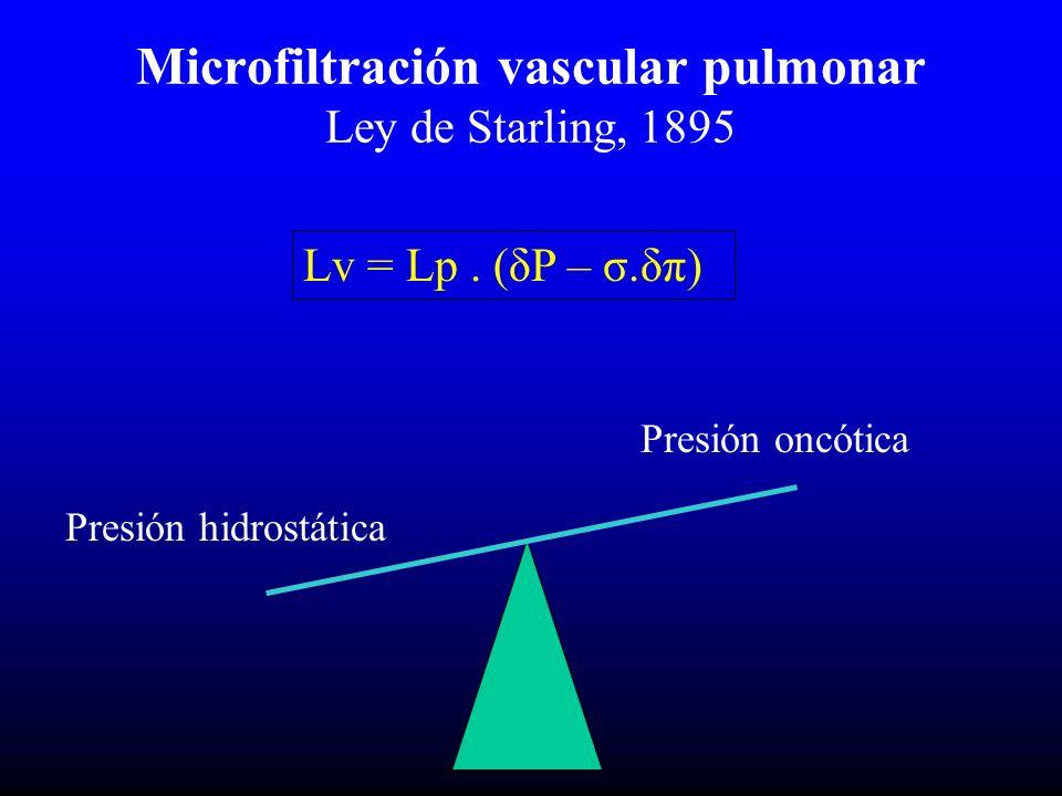 Microfiltración vascular pulmonar Ley de Starling, 1895 Lv = Lp.