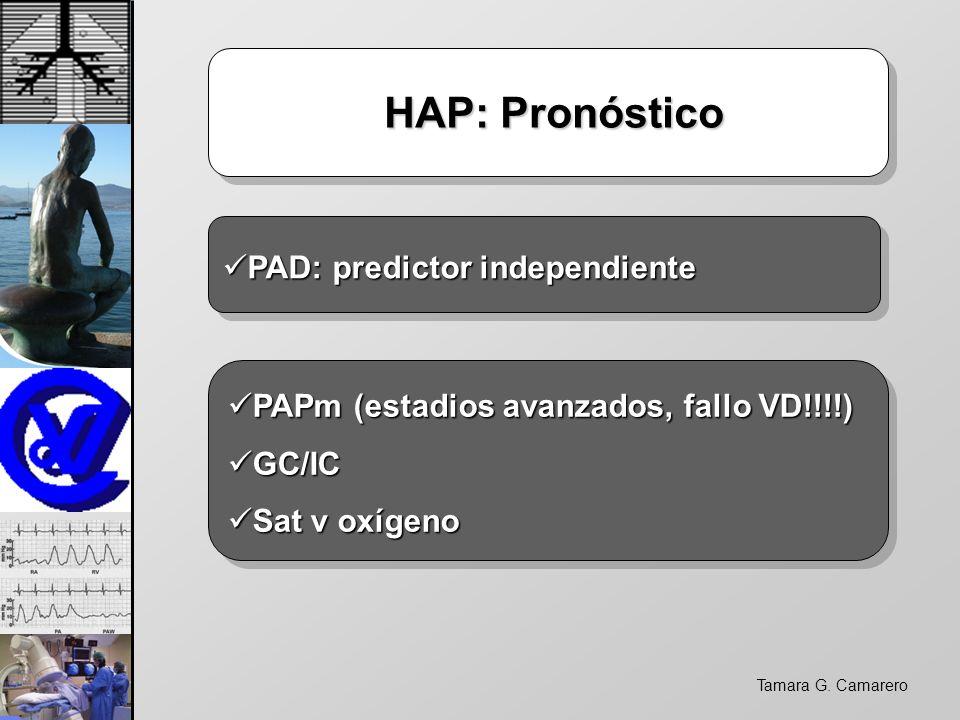 Tamara G. Camarero HAP: Pronóstico HAP: Pronóstico PAD: predictor independiente PAD: predictor independiente PAPm (estadios avanzados, fallo VD!!!!) P