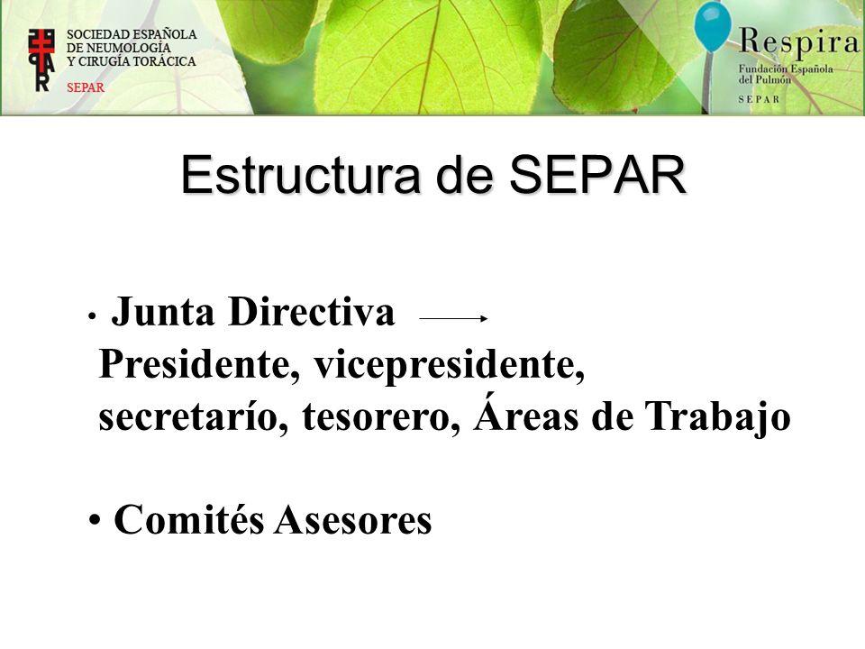 Estructura de SEPAR Junta Directiva Presidente, vicepresidente, secretarío, tesorero, Áreas de Trabajo Comités Asesores
