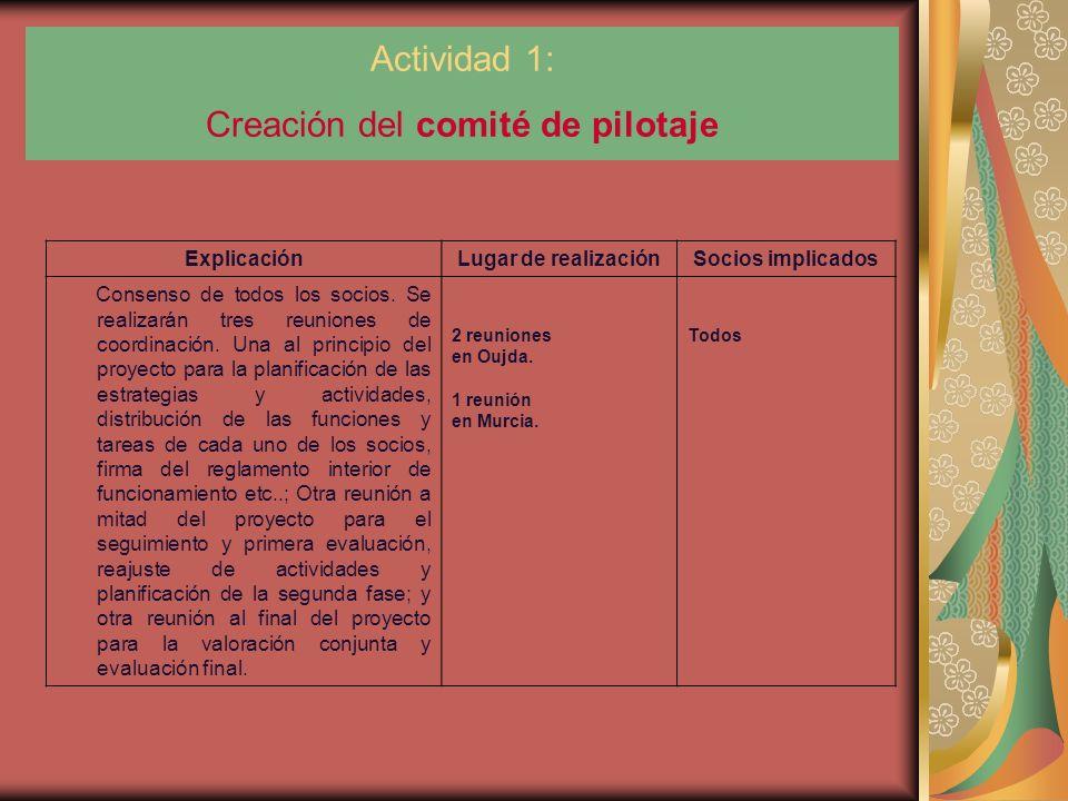 Actividad 1: Creación del comité de pilotaje ExplicaciónLugar de realizaciónSocios implicados Consenso de todos los socios.