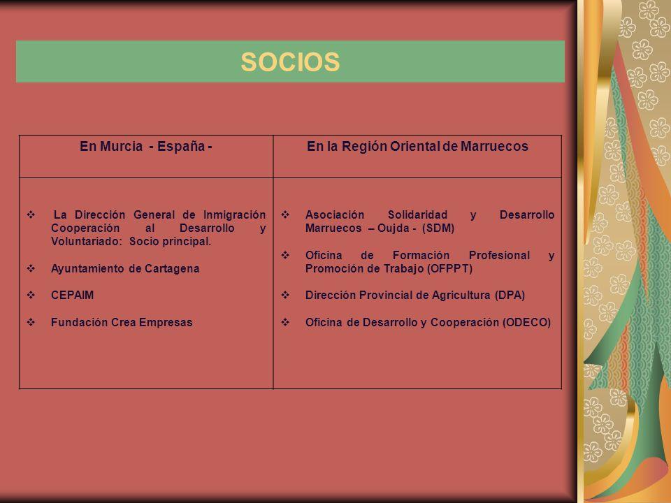 SOCIOS En Murcia - España -En la Región Oriental de Marruecos La Dirección General de Inmigración Cooperación al Desarrollo y Voluntariado: Socio principal.