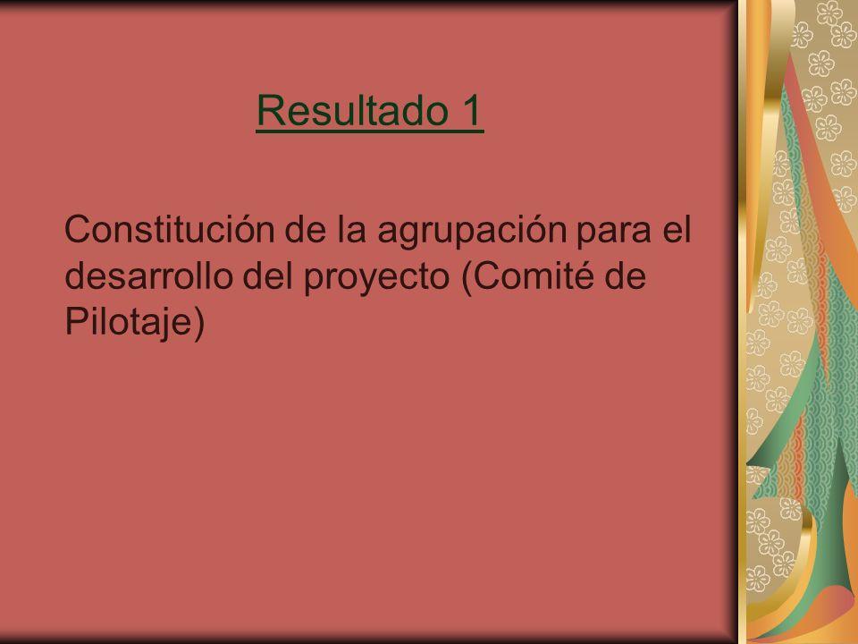 Resultado 1 Constitución de la agrupación para el desarrollo del proyecto (Comité de Pilotaje)