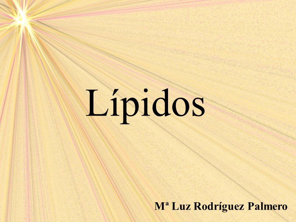 Mª Luz Rodríguez Palmero Lípidos