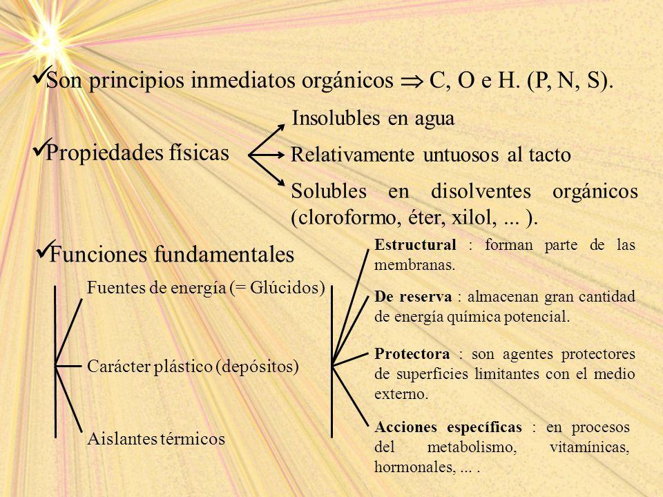 Son principios inmediatos orgánicos C, O e H. (P, N, S). Propiedades físicas Relativamente untuosos al tacto Insolubles en agua Solubles en disolvente