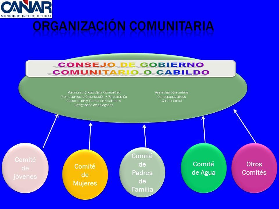 Otros Comités Comité de Agua Comité de Padres de Familia Comité de Mujeres Comité de jóvenes