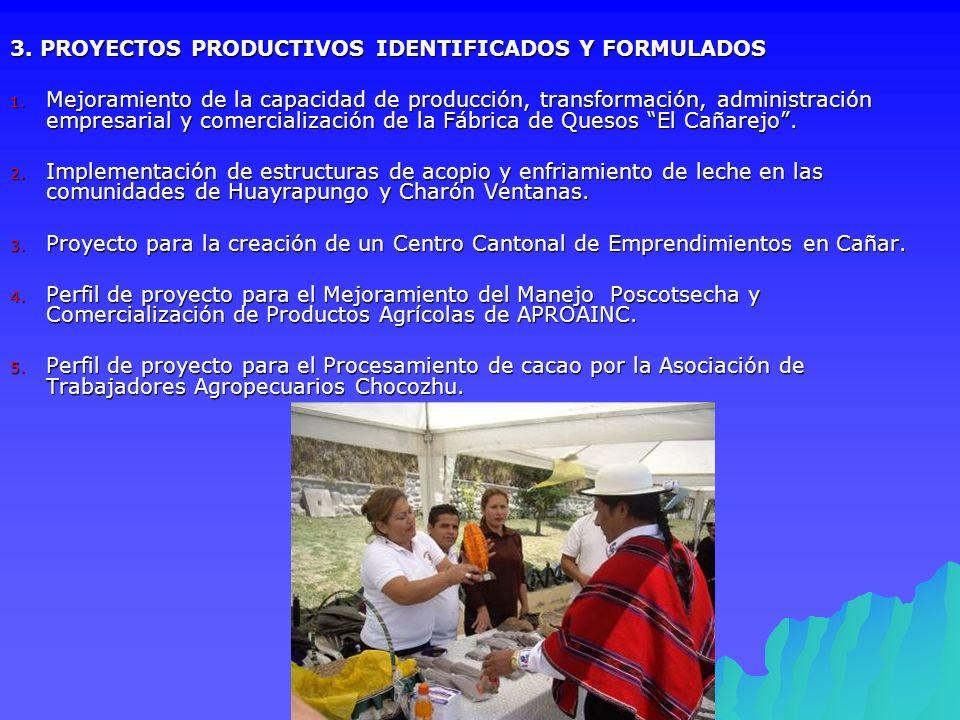 3. PROYECTOS PRODUCTIVOS IDENTIFICADOS Y FORMULADOS 1. Mejoramiento de la capacidad de producción, transformación, administración empresarial y comerc
