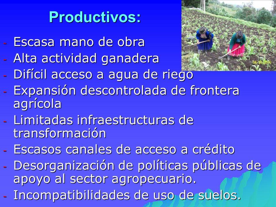 Productivos: - Escasa mano de obra - Alta actividad ganadera - Difícil acceso a agua de riego - Expansión descontrolada de frontera agrícola - Limitad