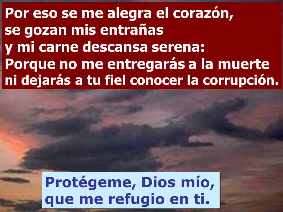 El Señor es el lote de mi heredad y mi copa, mi suerte está en su mano. Tengo siempre presente al Señor, con él a mi derecha no vacilaré. Protégeme, D