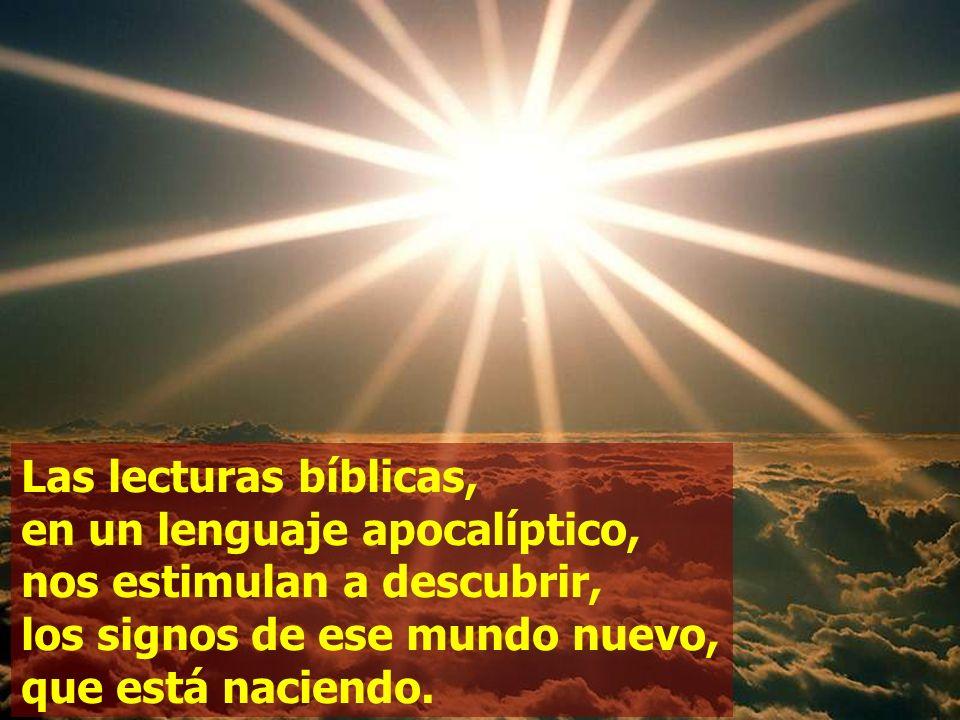 Las lecturas bíblicas, en un lenguaje apocalíptico, nos estimulan a descubrir, los signos de ese mundo nuevo, que está naciendo.