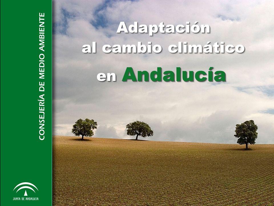 Mitigación Emisiones GEI Andalucía 2007 t CO 2 eq% Sector Industrial (RCDE)33.447.03850 Sector difuso33.896.06950 TOTAL67.343.107100 Objetivo reducción PAAC: Reducción del 19% de GEI per cápita en 2012 respecto de 2004 Paralelamente a la política de adaptación, la Junta de Andalucía aprobó en 2007 un programa de mitigación para emisiones difusas