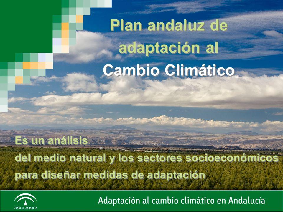 Plan andaluz de adaptación al Cambio Climático Es un análisis del medio natural y los sectores socioeconómicos para diseñar medidas de adaptación Es u