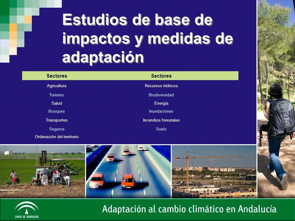 Estudios de base de impactos y medidas de adaptación Sectores AgriculturaRecursos hídricos TurismoBiodiversidad SaludEnergía BosquesInundaciones Trans