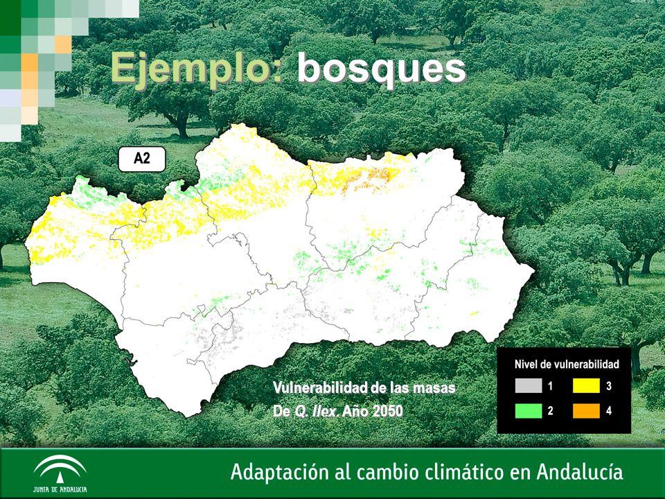 Vulnerabilidad de las masas De Q. Ilex. Año 2050 Vulnerabilidad de las masas De Q. Ilex. Año 2050 Ejemplo: bosques