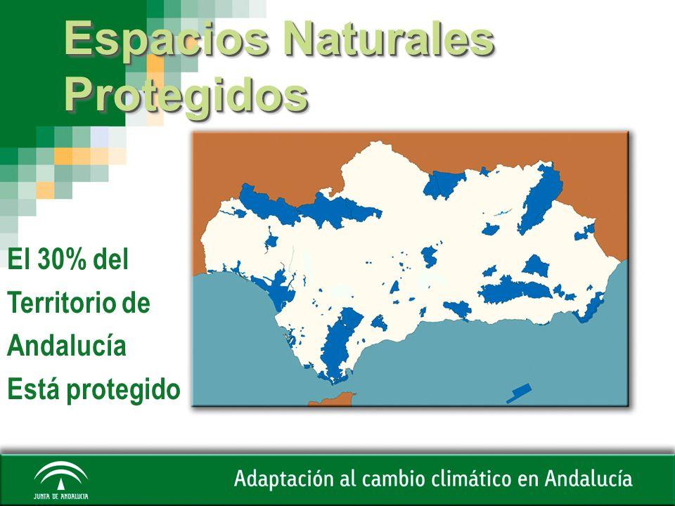 Espacios Naturales Protegidos El 30% del Territorio de Andalucía Está protegido