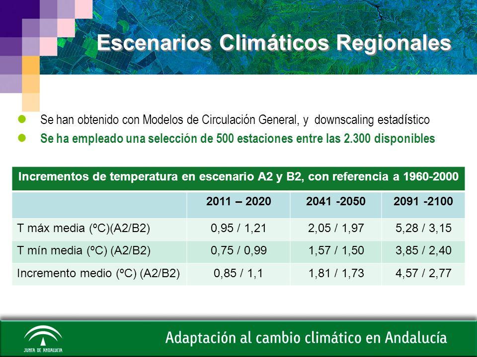 Precipitación Al final del siglo las reducciones de precipitación podrán llegar al 20% localmente.