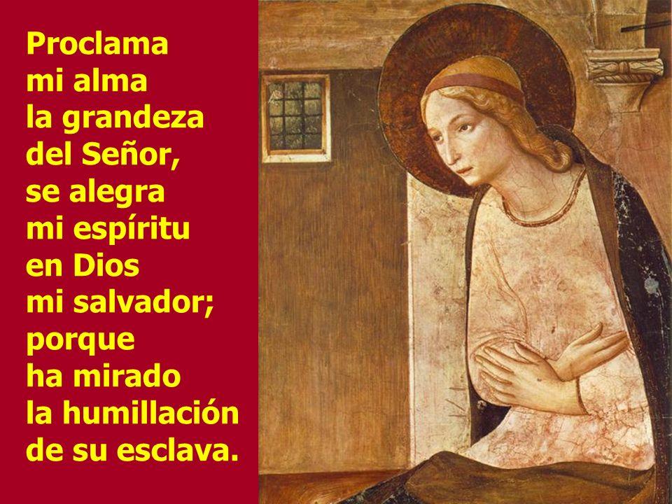 ¡Bendita tú entre las mujeres y bendito el fruto de tu vientre.! ¿Quién soy yo para que me visite la Madre de mi Señor?
