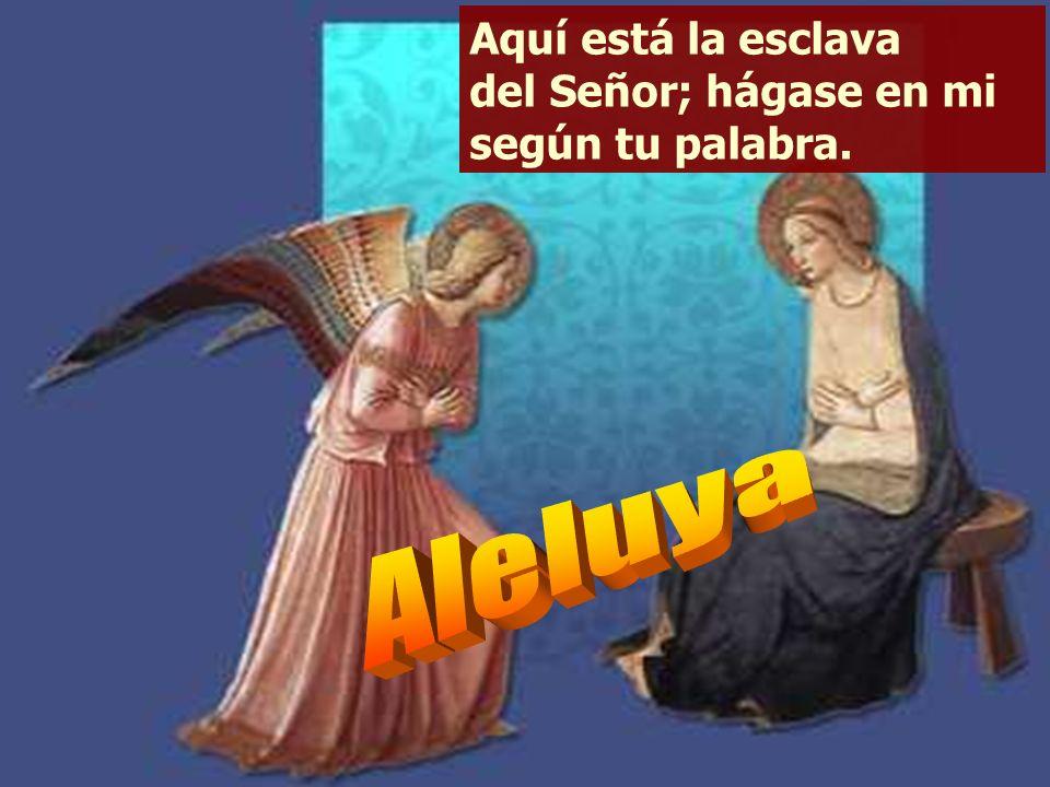 El me invocará: «Tú eres mi padre, mi Dios, mi Roca salvadora». Le mantendré eternamente, mi favor, y mi alianza con él será estable. Cantaré etername