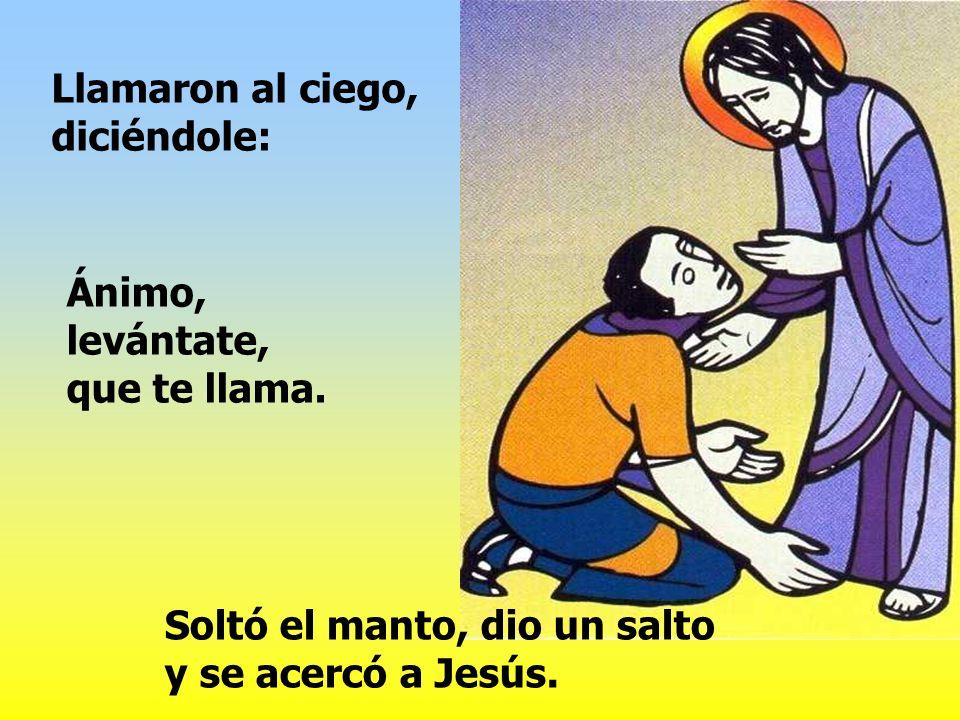 Jesús se detuvo y dijo: Llamadlo.