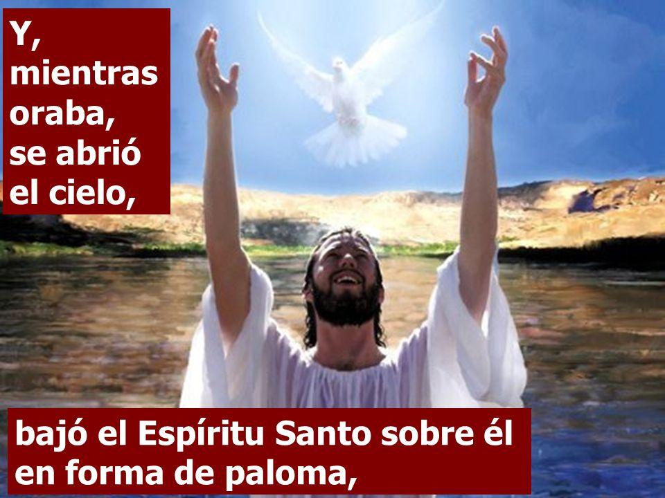 En un bautismo general, Jesús también se bautizó.