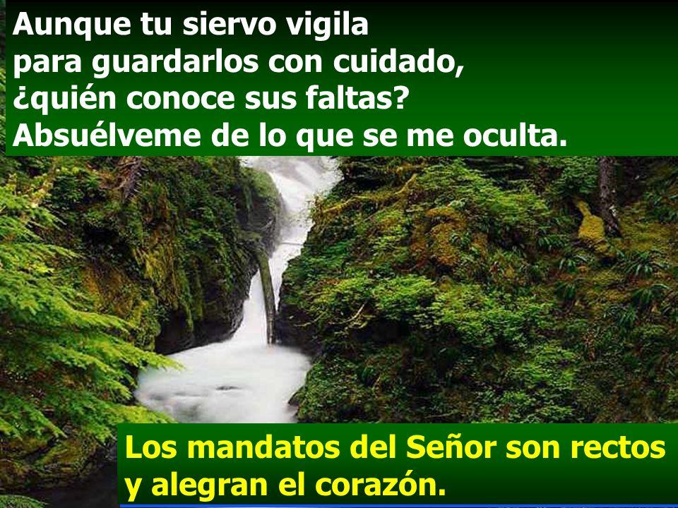 La voluntad del Señor es pura: y eternamente estable; los mandamientos del Señor son verdaderos y enteramente justos. Los mandatos del Señor son recto