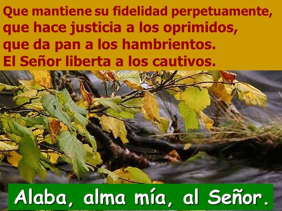 Salmo 145 Alaba, alma mía, al Señor. Alaba, alma mía, al Señor.