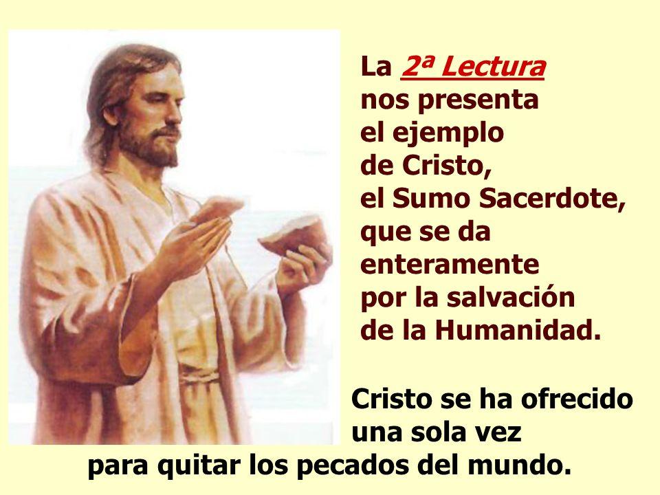 La 2ª Lectura nos presenta el ejemplo de Cristo, el Sumo Sacerdote, que se da enteramente por la salvación de la Humanidad.
