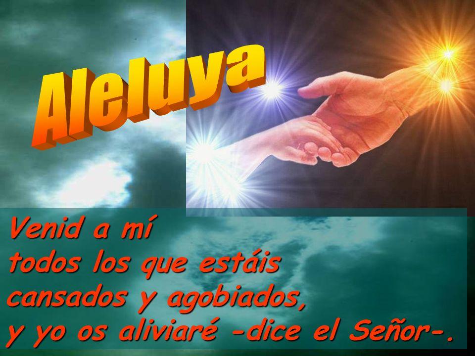 Venid a mí todos los que estáis cansados y agobiados, y yo os aliviaré -dice el Señor-.