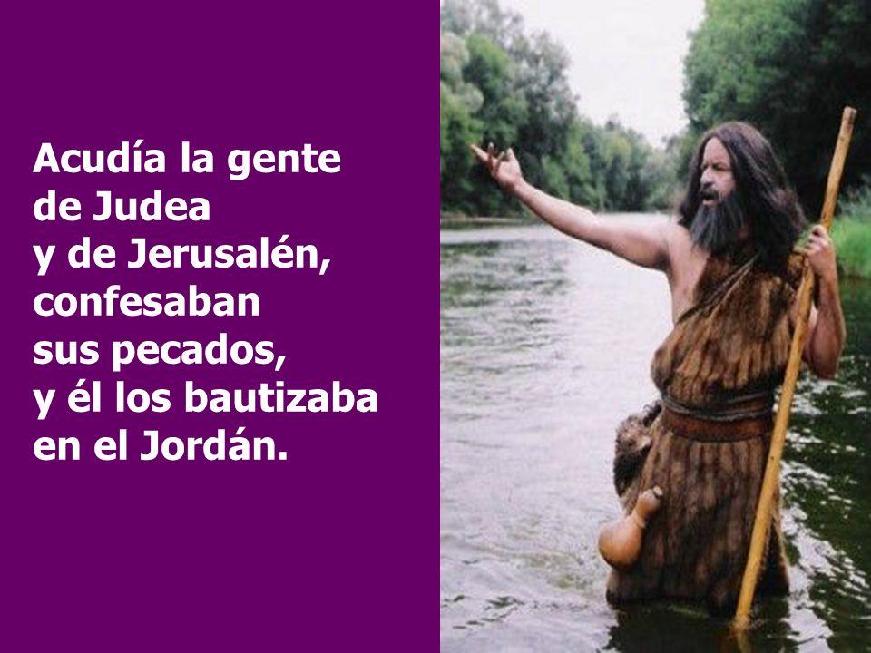 Acudía la gente de Judea y de Jerusalén, confesaban sus pecados, y él los bautizaba en el Jordán.