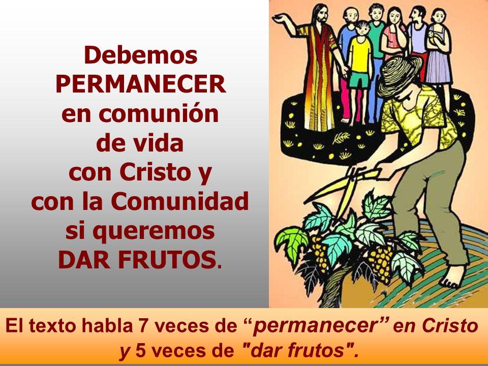 Debemos PERMANECER en comunión de vida con Cristo y con la Comunidad si queremos DAR FRUTOS.