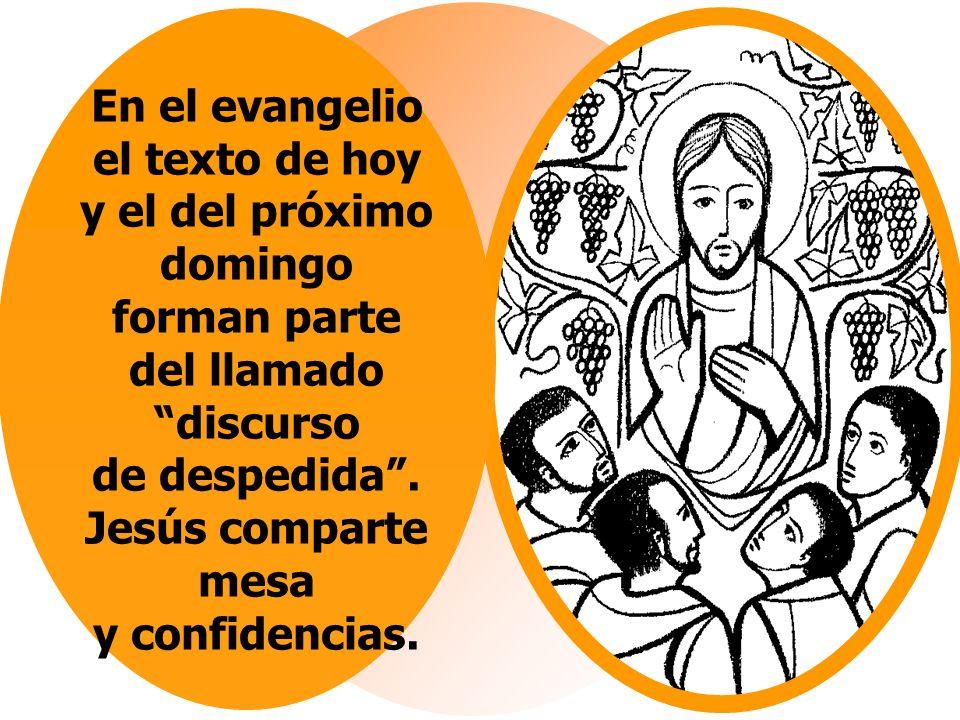 En el evangelio el texto de hoy y el del próximo domingo forman parte del llamado discurso de despedida.
