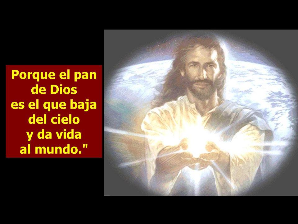Jesús les replicó: Os aseguro que no fue Moisés quien os dio pan del cielo, sino que es mi Padre el que os da el verdadero pan del cielo. Le replicaro