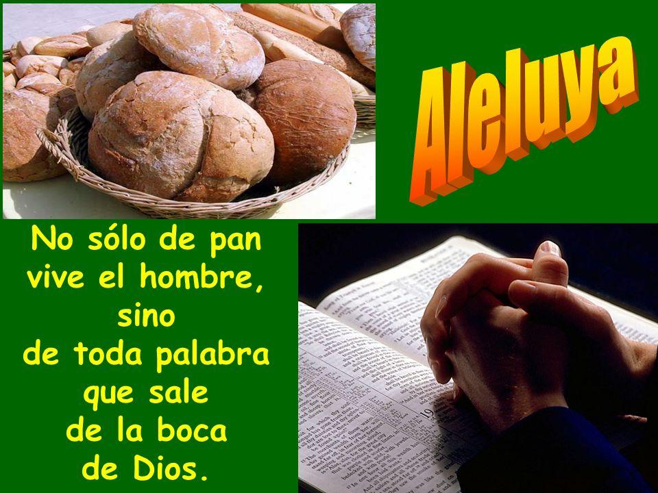 Y el hombre comió pan de ángeles, les mandó provisiones hasta la hartura. Los hizo entrar por las santas fronteras, hasta el monte que su diestra habí