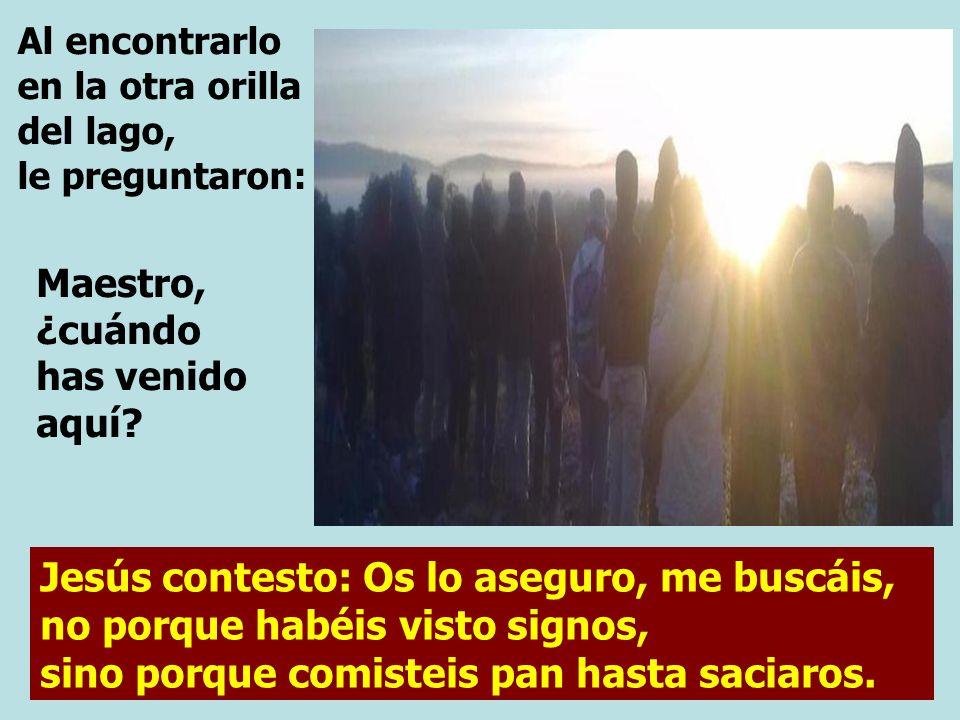 Jesús contesto: Os lo aseguro, me buscáis, no porque habéis visto signos, sino porque comisteis pan hasta saciaros.