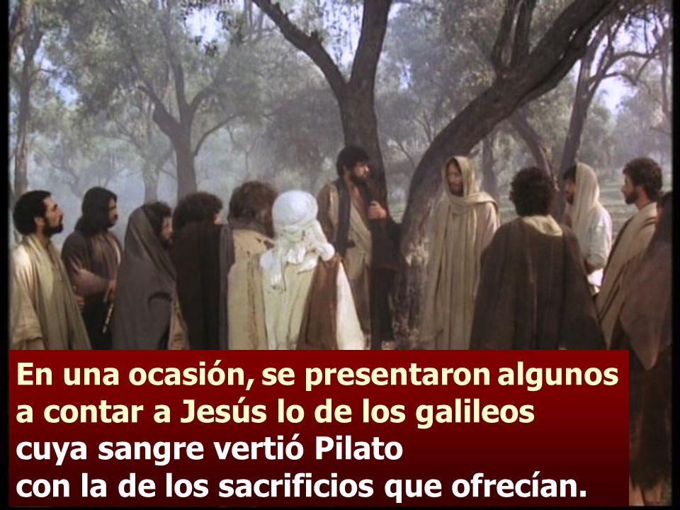 - Jesús contestó: ¿Pensáis que esos galileos eran más pecadores que los demás galileos, porque acabaron así.