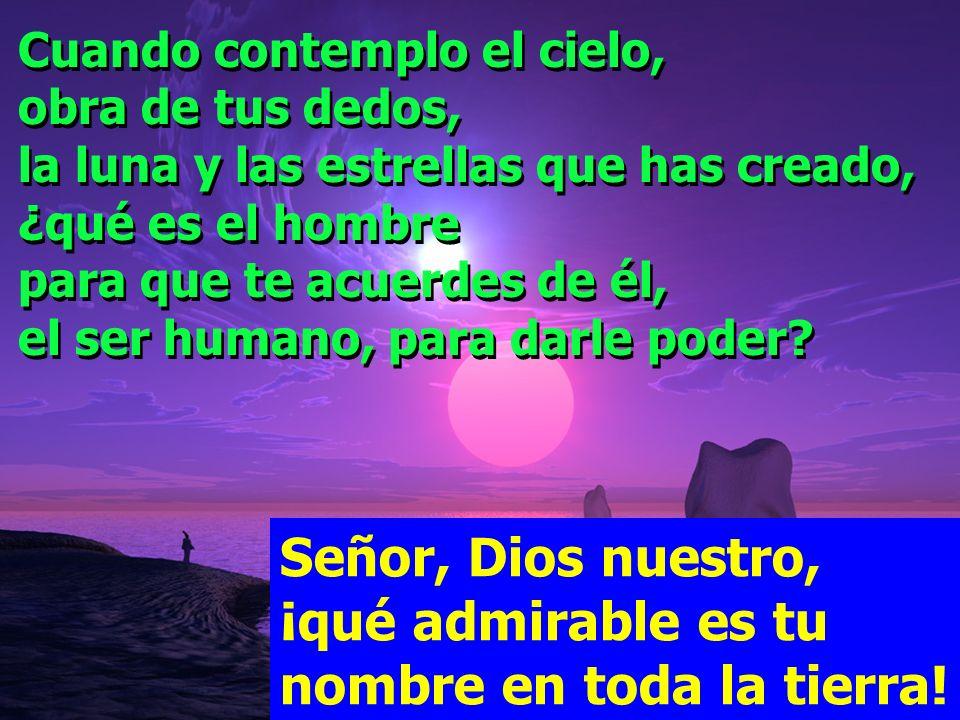 Señor, Dios nuestro, ¡qué admirable es tu nombre en toda la tierra! Salmo 8