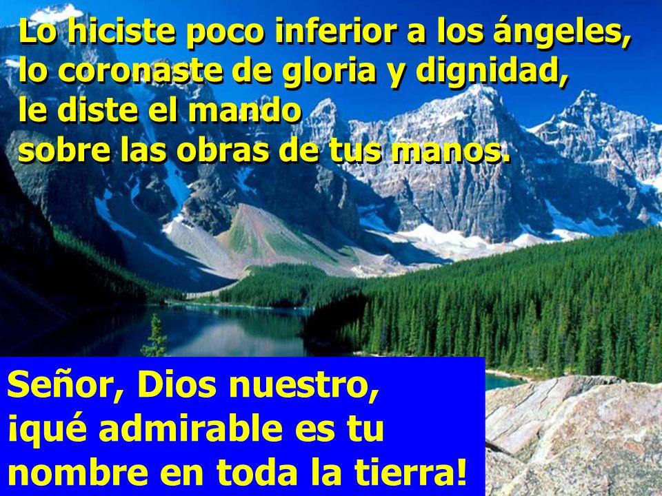 Señor, Dios nuestro, ¡qué admirable es tu nombre en toda la tierra! Cuando contemplo el cielo, obra de tus dedos, la luna y las estrellas que has crea