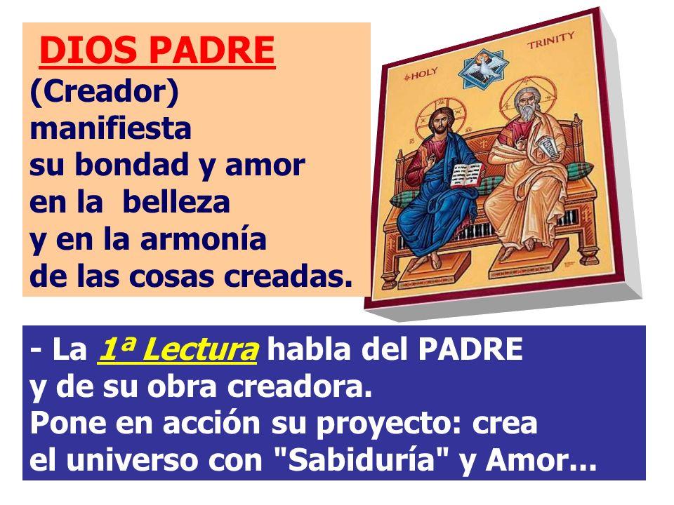 - La 1ª Lectura habla del PADRE y de su obra creadora.