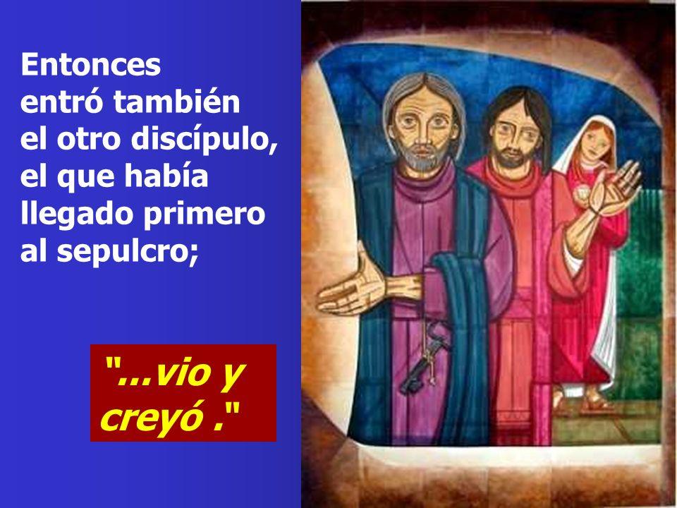 Llegó también Simón Pedro detrás de él y entró en el sepulcro: vio las vendas en el suelo y el sudario con el que habían cubierto la cabeza, no por el