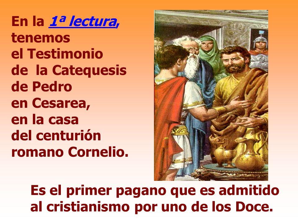 La Iglesia, celebra hoy con alegría en la RESURRECCIÓN de Cristo, la Victoria de la Vida sobre la muerte.