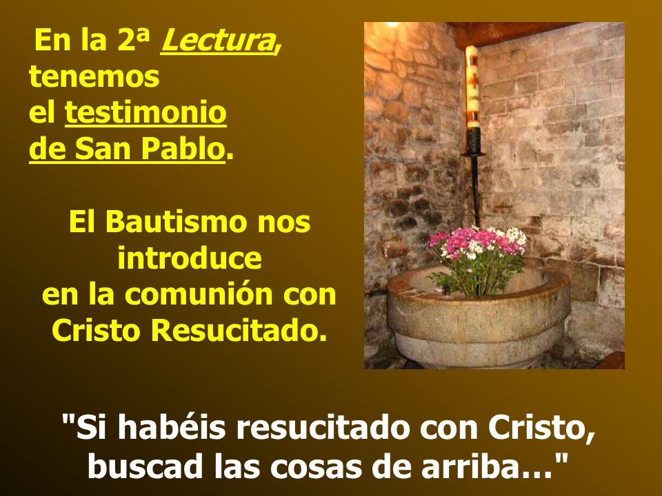 En la 1ª lectura, tenemos el Testimonio de la Catequesis de Pedro en Cesarea, en la casa del centurión romano Cornelio. Es el primer pagano que es adm