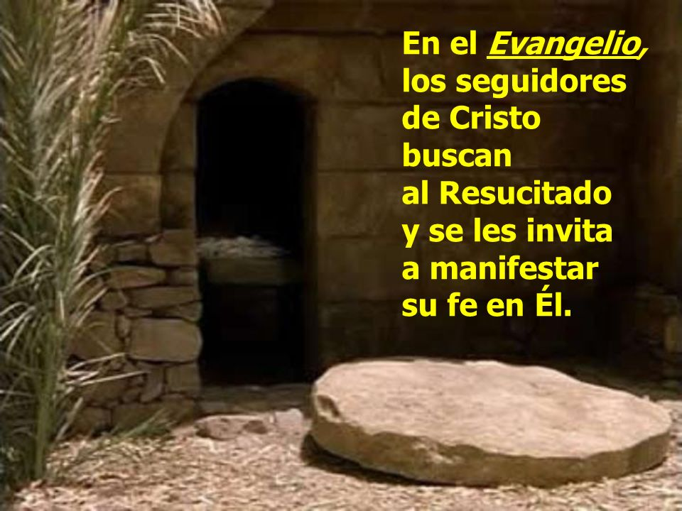 En el Evangelio, los seguidores de Cristo buscan al Resucitado y se les invita a manifestar su fe en Él.