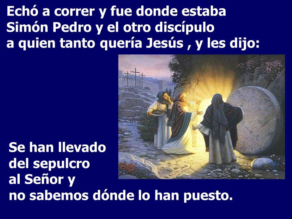 Echó a correr y fue donde estaba Simón Pedro y el otro discípulo a quien tanto quería Jesús, y les dijo: Se han llevado del sepulcro al Señor y no sabemos dónde lo han puesto.
