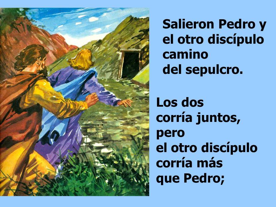 Echó a correr y fue donde estaba Simón Pedro y el otro discípulo a quien tanto quería Jesús, y les dijo: Se han llevado del sepulcro al Señor y no sab