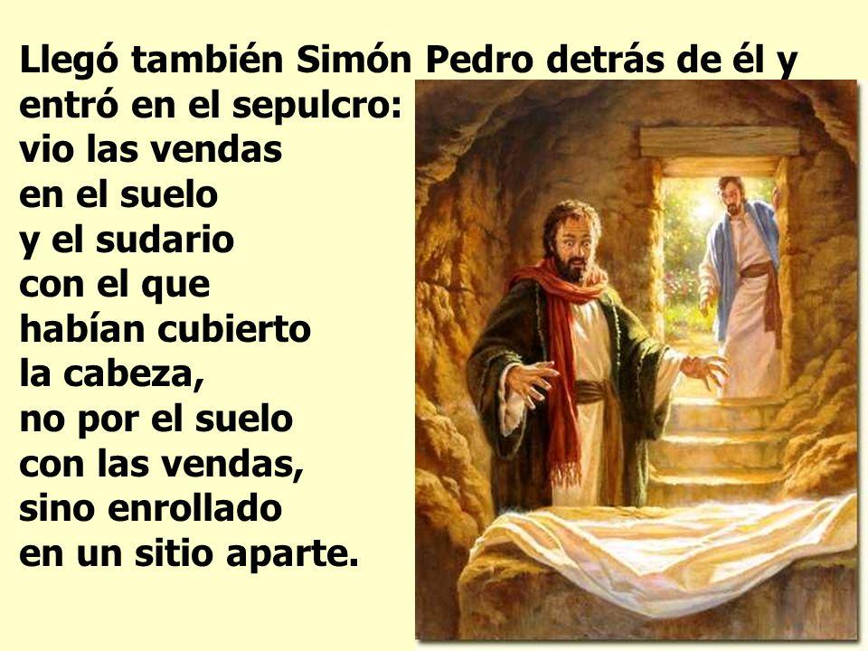 Llegó también Simón Pedro detrás de él y entró en el sepulcro: vio las vendas en el suelo y el sudario con el que habían cubierto la cabeza, no por el suelo con las vendas, sino enrollado en un sitio aparte.